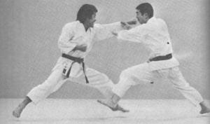 Kawasoe Sensei and Osaka Sensei exchanging techniques in Best Karate Vol.4